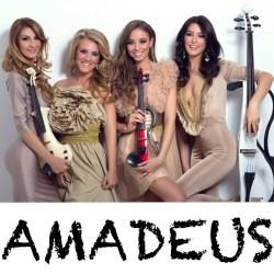 Tarif Nunta Botez Concert Amadeus Image